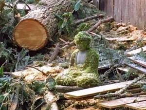 While Nancy Fletcher's back garden and fence were severely damaged in the ice storm, the Buddha statue remains serene.